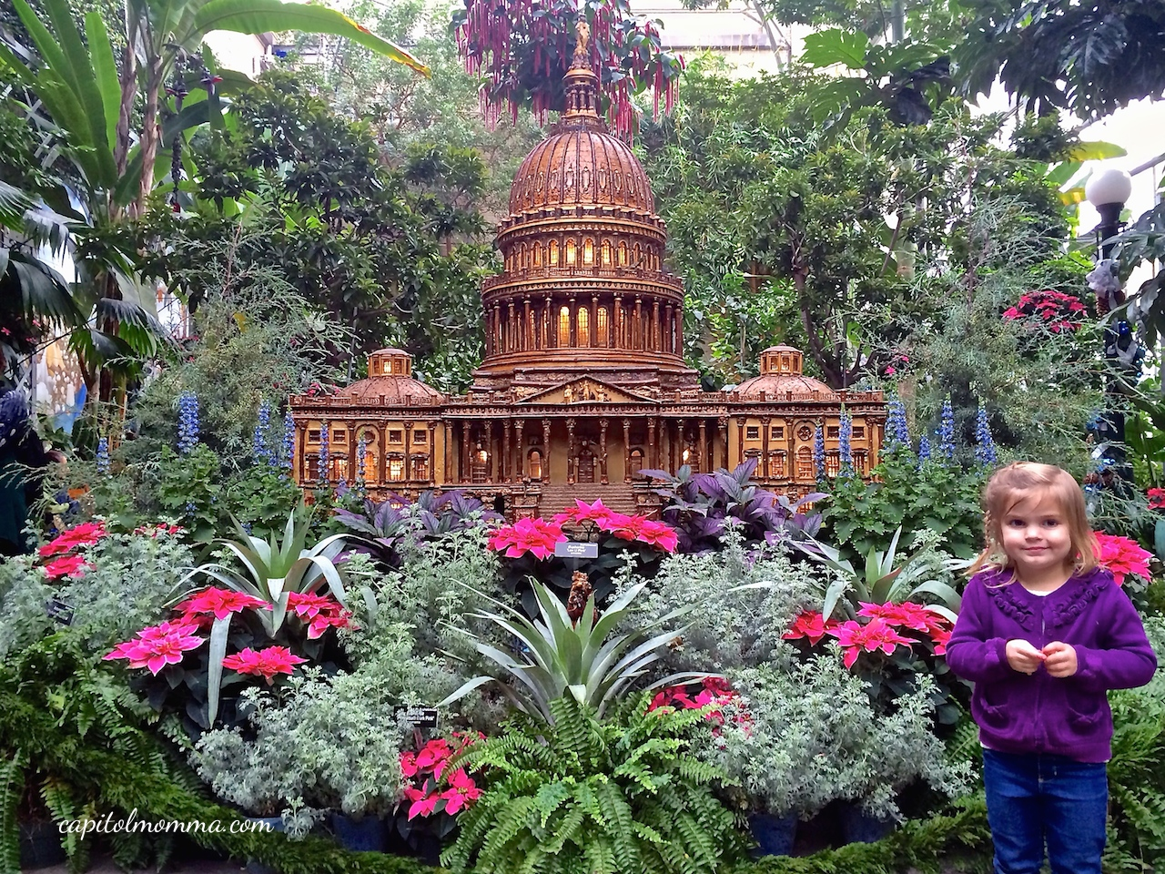 Season S Greetings At The United States Botanic Garden Capitol Momma